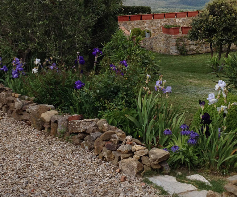 Manutenzioni giardini, aiuole e parchi