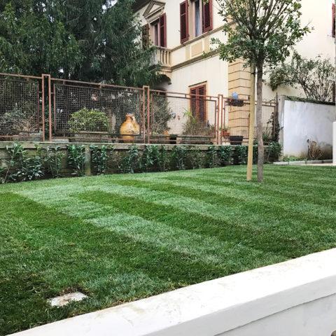 Installazione prato a rotoli provincia Arezzo Siena Caiani Vivai Garden