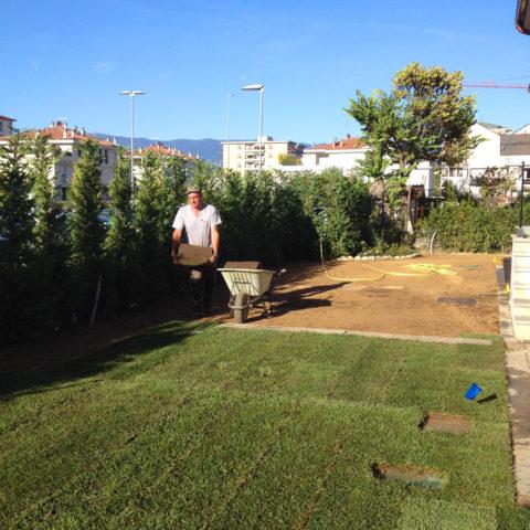 Installazione tappeti erbosi Valdarno montevarchi Caiani Vivai Garden