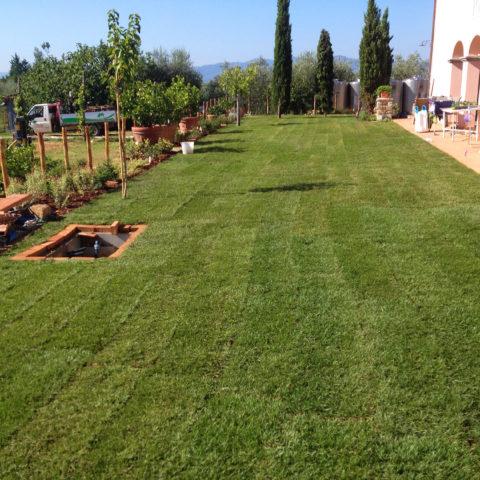 Installazione tappeto erboso per agriturismi Valdarno Caiani Vivai Garden