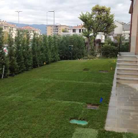 Installazione tappeto erboso Valdarno montevarchi Caiani Vivai Garden