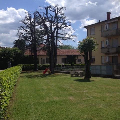 Manutenzione parchi e aree verdi Valdarno Caiani Vivai Garden