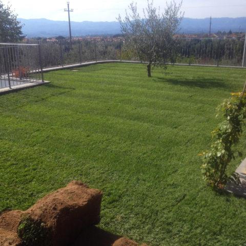 Posa tappeti erbosi Valdarno provincia Arezzo Caiani Vivai Garden