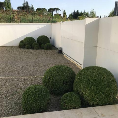 Realizzazione aiuole con bosso sfera Valdarno Caiani Vivai Garden
