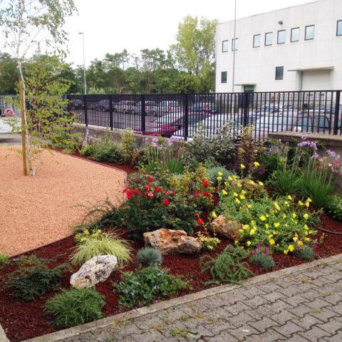 Realizzazione aiuole per aziende Caiani Vivai Garden