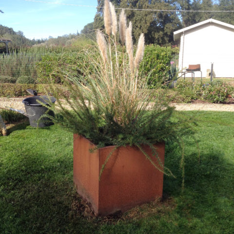 Realizzazione aree verdi con vasi corten provincia Arezzo Siena Caiani Vivai Garden