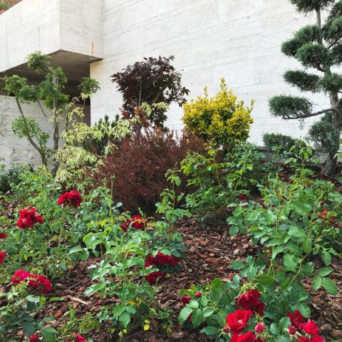 Realizzazione aree verdi design Caiani Vivai Garden