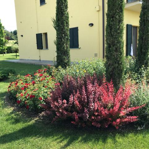 Realizzazione aree verdi Valdarno Caiani Vivai Garden