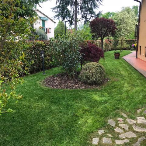 Realizzazione giardini con aiuole Valdarno Caiani Vivai Garden