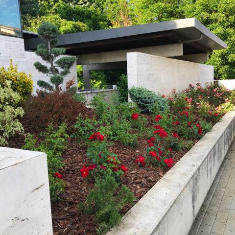 Realizzazione giardini design provincia Arezzo Caiani Vivai Garden