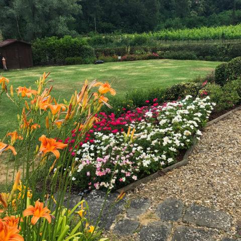 Realizzazione giardini e aiuole Valdarno Caiani Vivai Garden