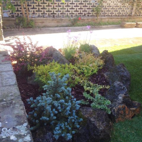 Realizzazione giardini rocciosi Valdambra Valdarno provincia Arezzo Siena Caiani Vivai Garden