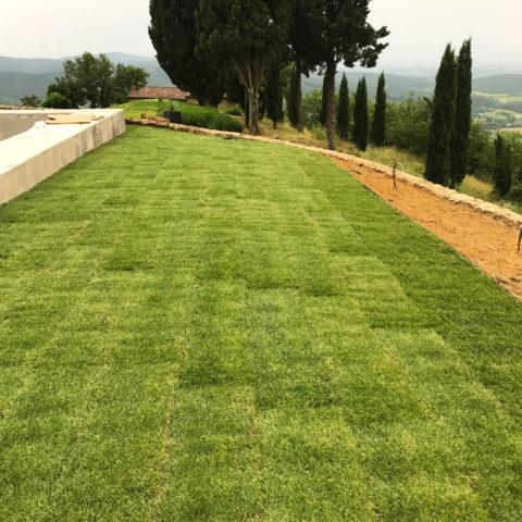 Realizzazione giardini tappeto erboso Valdarno Caiani Vivai Garden