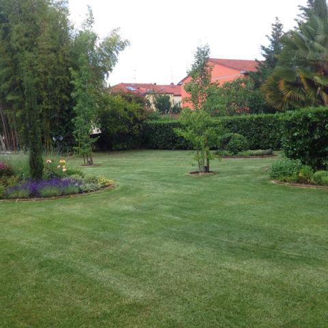 Realizzazione giardini Valdambra Valdarno provincia Arezzo Siena Caiani Vivai Garden
