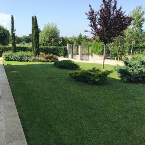 Realizzazione giardini Valdambra Caiani Vivai Garden