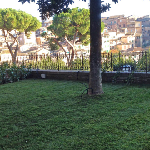 Realizzazione giardini vicino Siena Caiani Vivai Garden