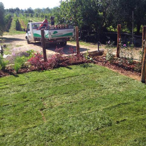 Realizzazione giardino tappeto erboso Valdarno Caiani Vivai Garden
