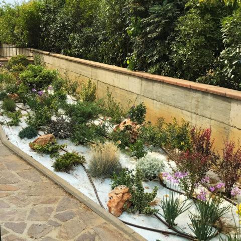 Realizzazione pacciamatura aiuole Valdarno Caiani Vivai Garden
