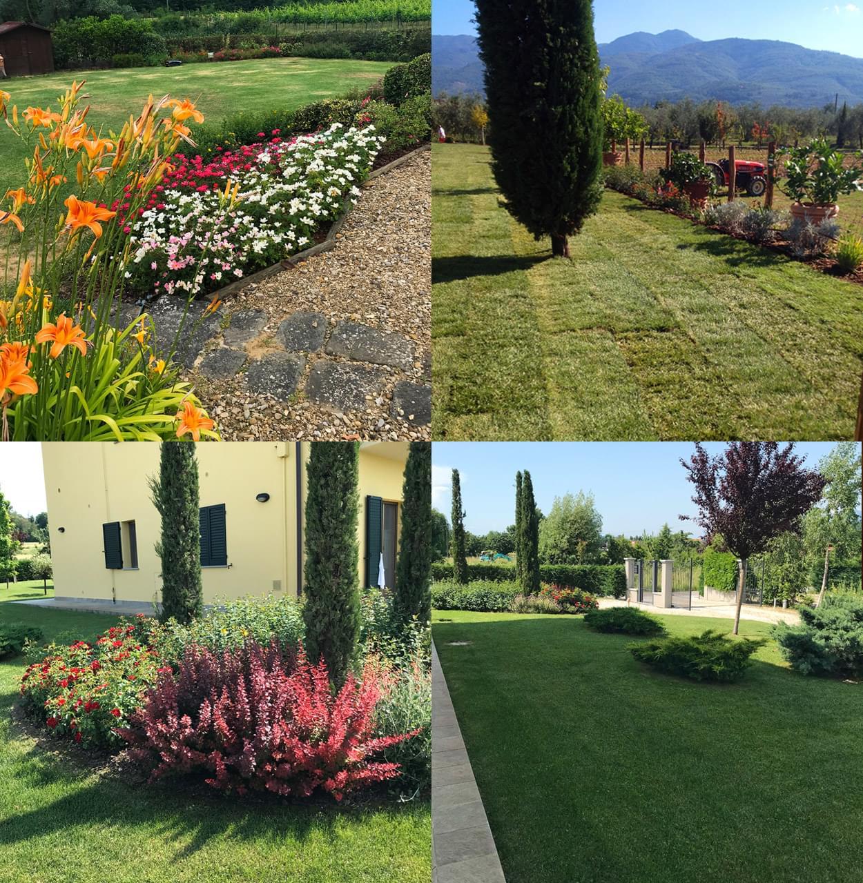 Azienda Agricola Caiani Simone, Bucine (Arezzo)